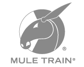 Mule Train - WEB DESIGN & DEVELOPMENT